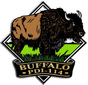 Buffalo Diamond Name-Drop Magnet