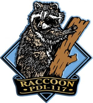 Raccoon Diamond Name-Drop Magnet