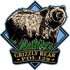 Grizzly Bear Diamond Name-Drop Magnet