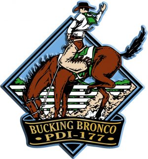 Bucking Bronco Diamond Name-Drop Magnet