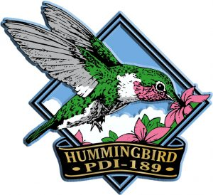 Hummingbird Diamond Magnet